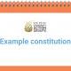 Example constitution